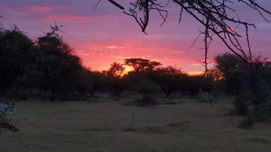 African Sunset at Mongena Game Reserve